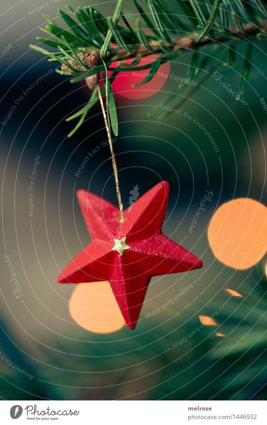 kleiner roter Stern Stil Design Weihnachten & Advent Winter Christbaum Tannenbaum Weihnachtsbaum Tannenzweig Tannennadel Bokeh Christbaumschmuck Holzstern