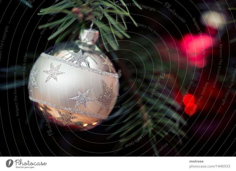 es weihnachtet IV Weihnachten & Advent grün schön Baum rot Wärme Gefühle Stil Feste & Feiern braun Stimmung Design glänzend leuchten Dekoration & Verzierung