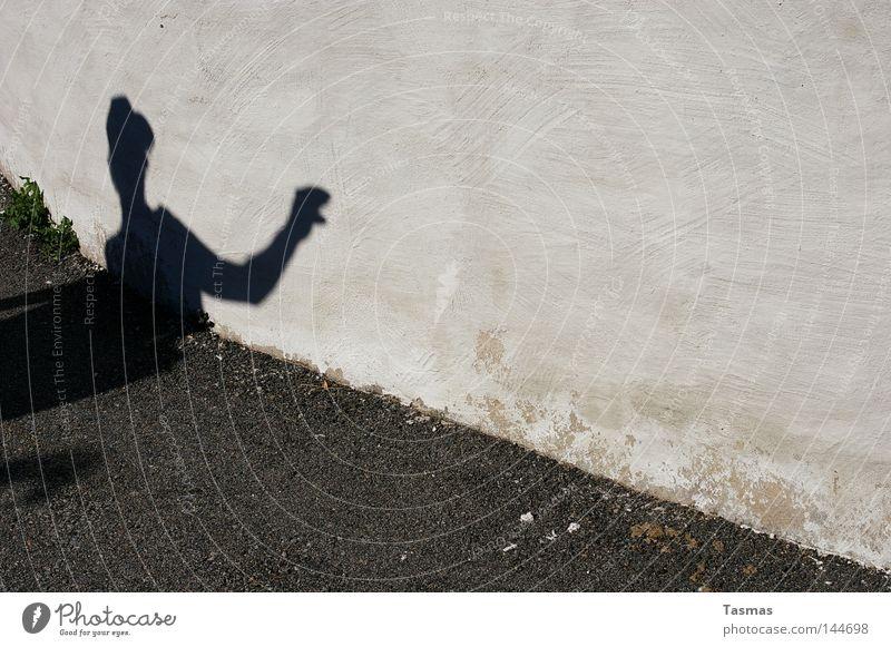 Die Falsche Schlange falsch Schatten Silhouette Wand gruselig Schattenspiel Typ Angst Panik gefährlich Projektion
