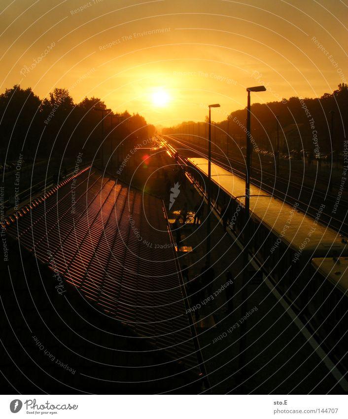linie S5 Sonne dunkel Stimmung Beleuchtung Verkehr Eisenbahn Ordnung Bahnhof Verkehrswege erleuchten blenden Sonnenaufgang Blendeneffekt