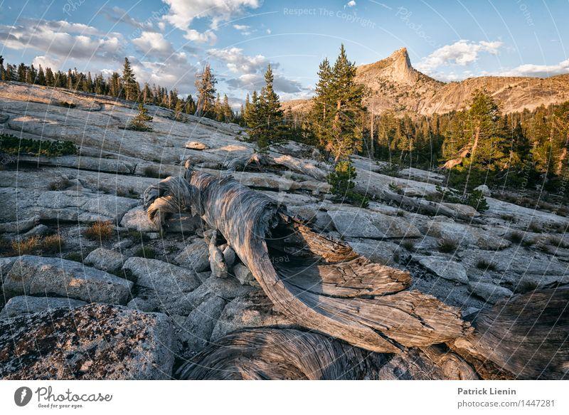 Yosemite NP Himmel Natur Ferien & Urlaub & Reisen Sommer Baum Erholung Landschaft ruhig Ferne Berge u. Gebirge Umwelt Freiheit Zufriedenheit Wetter Tourismus
