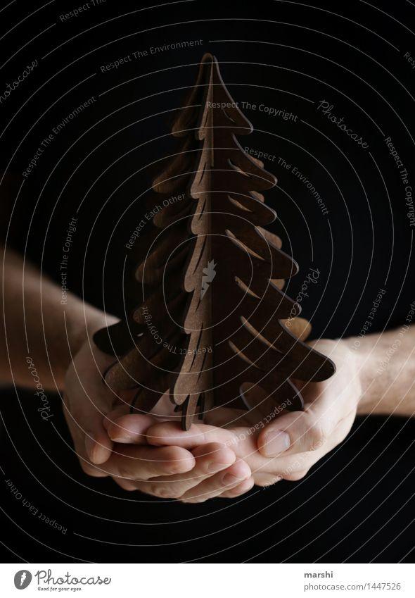 Weihnachtsstimmung Mensch Weihnachten & Advent Hand Gefühle Holz Stimmung Dekoration & Verzierung Jahreszeiten Weihnachtsbaum Vorfreude Weihnachtsdekoration