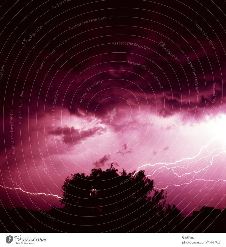 Gewitterhimmel Haus Himmel Wolken Blitze Baum Fenster bedrohlich dunkel hell violett rosa Angst beängstigend laut Donnern Urknall Mittelformat Naturgewalt Panik