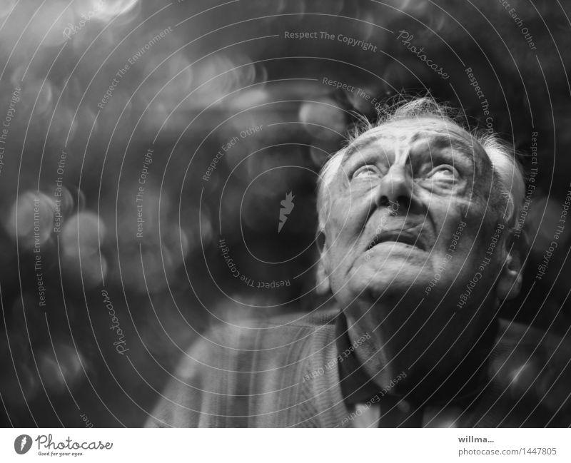gott würfelt nicht. Seniorenpflege Ruhestand maskulin Mann Erwachsene Männlicher Senior Großvater Kopf Gesicht Hoffnung demütig Erwartung Glaube