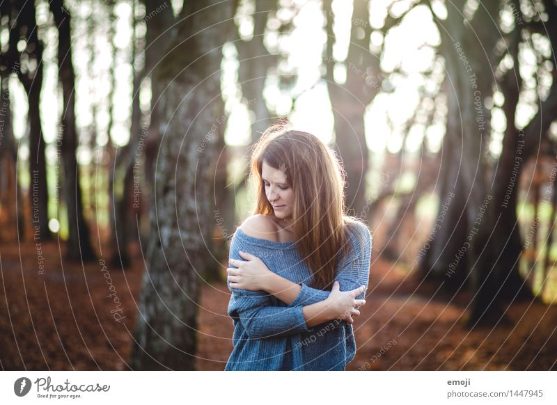 Kuschelzeit feminin Junge Frau Jugendliche 1 Mensch 18-30 Jahre Erwachsene Umwelt Natur Herbst Pullover brünett langhaarig schön kuschlig Erotik Farbfoto