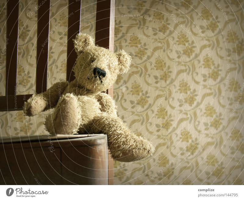 Bernd der Bär Freude Stuhl Tapete Kinderzimmer Teddybär Stofftiere sitzen gruselig lustig retro süß Blümchentapete antik Siebziger Jahre Sechziger Jahre obskur