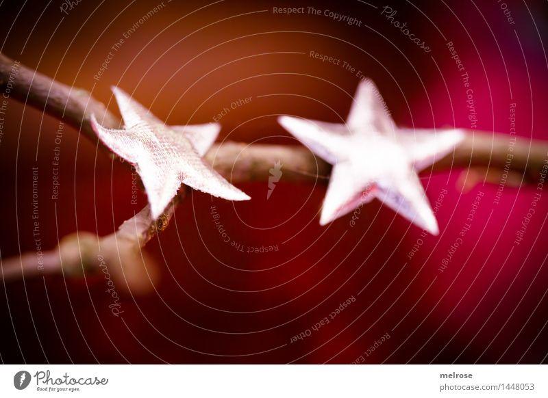 keine Seesterne elegant Stil Weihnachten & Advent Zweige u. Äste Dekoration Stern (Symbol) Farbfleck Vorfreude Denken glänzend genießen leuchten liegen einfach