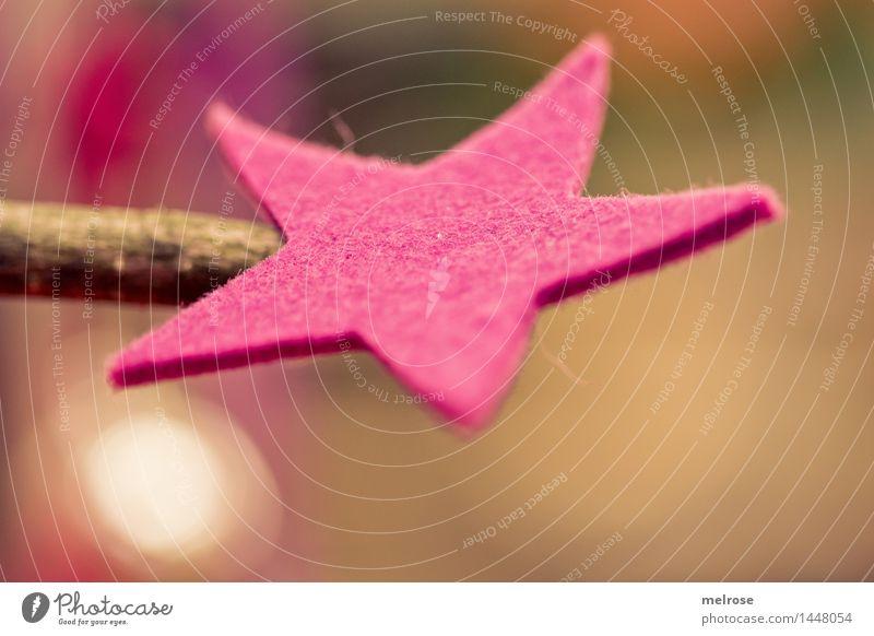 Ein Stern ist ... Stil Design Weihnachten & Advent Zweige u. Äste Holzstück Filzstern Vorfreude Feste & Feiern Ritual Unschärfe Lichtpunkt glänzend leuchten