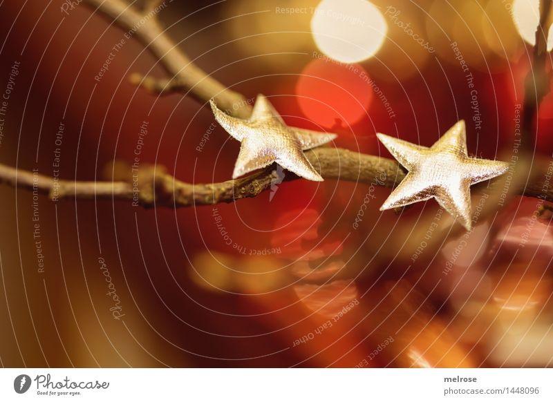 TROMMEL ... !!! 500 !!! elegant Stil Design Weihnachten & Advent Zweige u. Äste Dekoration & Verzierung Unschärfe Lichterschein Lichtpunkte Stern (Symbol)