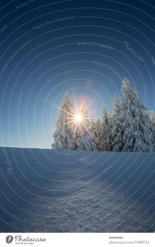 Winterwaldsonne Ferien & Urlaub & Reisen Tourismus Schnee Winterurlaub Berge u. Gebirge wandern Natur Landschaft Luft Himmel Sonne Klima Schönes Wetter Eis
