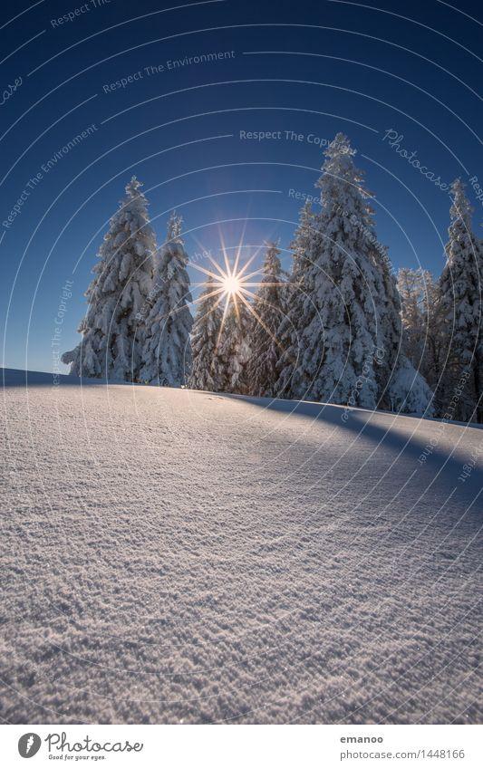 Winterwald Himmel Natur Ferien & Urlaub & Reisen Baum Landschaft Wald kalt Berge u. Gebirge Schnee Schneefall Tourismus Eis wandern hoch Ausflug
