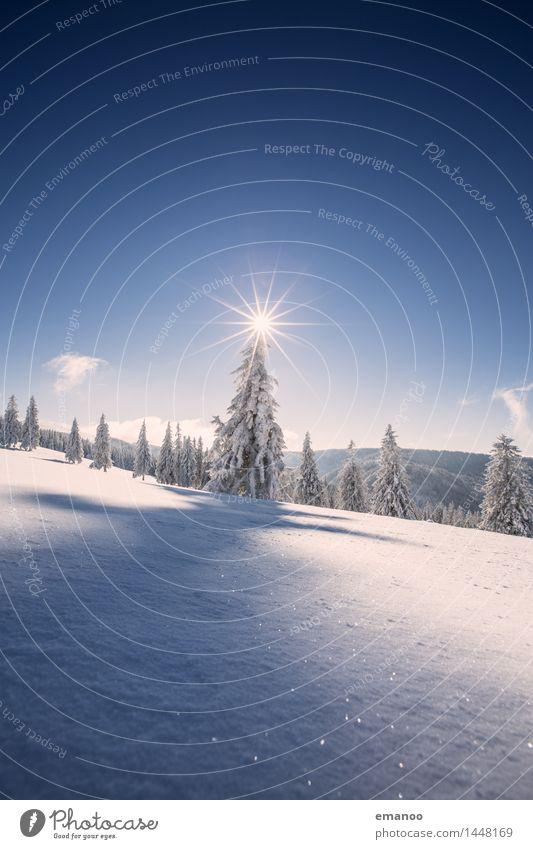 Wintertraum Himmel Natur Ferien & Urlaub & Reisen Weihnachten & Advent Pflanze blau Sonne Baum Landschaft Wald kalt Berge u. Gebirge Schnee Freiheit hell