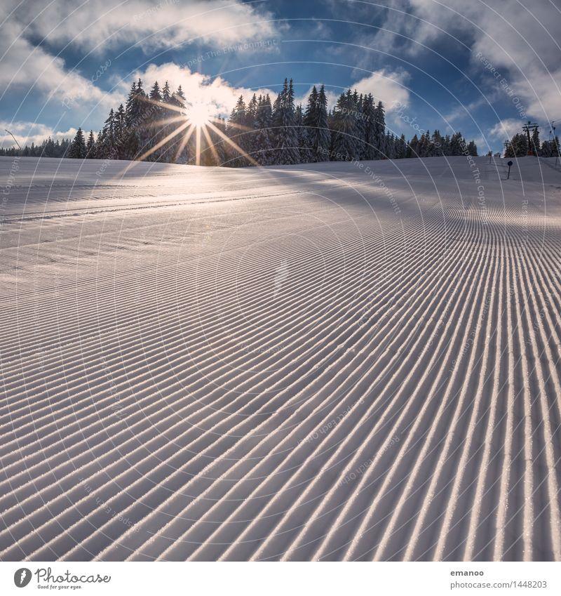 Piste Natur Ferien & Urlaub & Reisen Sonne Landschaft Winter Wald Berge u. Gebirge kalt Schnee Sport Linie Tourismus Eis frisch Geschwindigkeit Hügel