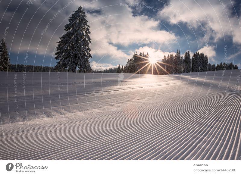 Piste Natur Ferien & Urlaub & Reisen Landschaft Wolken Winter Wald kalt Schnee Sport Lifestyle Linie Tourismus frisch Streifen Hügel Alpen