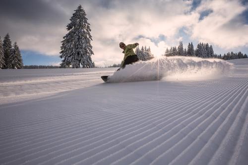 Schneebremser Mensch Ferien & Urlaub & Reisen Mann Freude Winter Wald kalt Erwachsene Stil Sport Lifestyle Linie frisch Kraft fahren