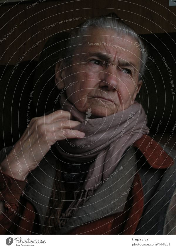 Oma Senior oma Altbier Frau herbst gefaltet grossmutter Familie rentnerin Porträt murmeln denken nachdenklich Gesicht weisheit Charakter Hand human Persone
