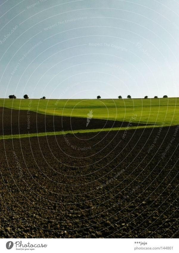 ruralgeometrie II. Natur Baum Herbst Wiese braun Feld Erde Landwirtschaft Amerika Geometrie Furche Allee Schlamm ländlich Argentinien