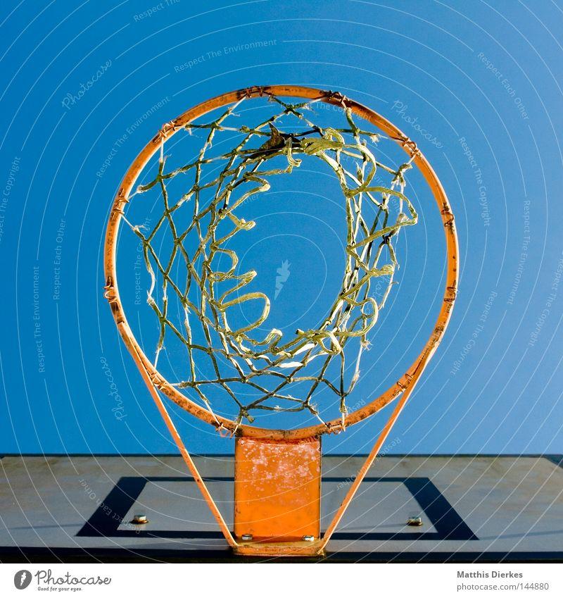Ballnachkorbperspektive Korb Basketballkorb Ballsport Sommer Herbst Sonnenlicht Froschperspektive Sport Luft Befestigung Spielen Treffer Tiefenschärfe