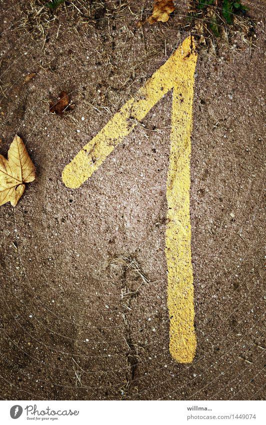 die uneins   zifferblätter Geburtstag 1 Mensch Herbst Ziffern & Zahlen braun gelb Termin & Datum herbstlich Herbstlaub Lebensalter Nummer eins Januar Jubiläum