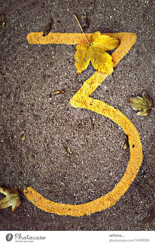 flotter dreier | zifferblätter Herbst Ziffern & Zahlen 3 braun gelb Termin & Datum Jubiläum Blatt herbstlich Farbfoto Außenaufnahme Vogelperspektive