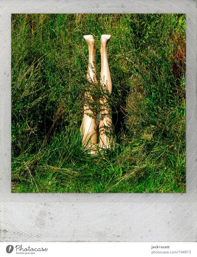 Zum im Boden versinken Mensch grün Gefühle Gras Garten Beine Fuß Angst gefährlich Zeichen Polaroid verstecken machen skurril Surrealismus Straßenkunst