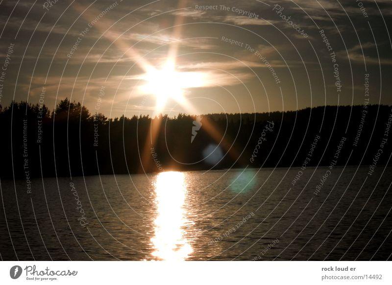 Funkel Sonne Silhouette Wald dunkel Reflexion & Spiegelung mystisch Abenddämmerung Dämmerung Landschaft Wasser Beleuchtung Sonnenuntergang