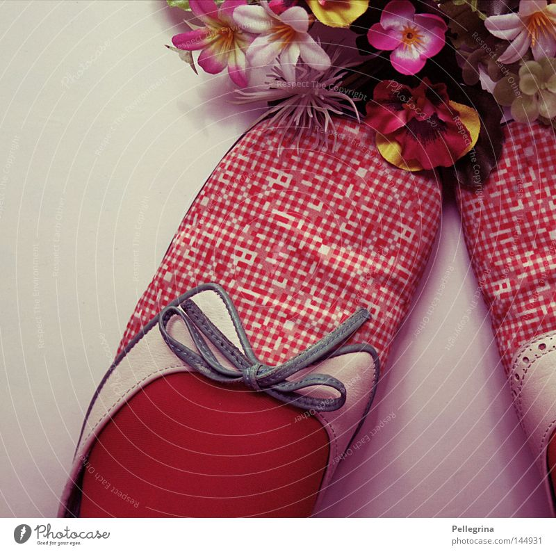 flora alt Blume Schuhe retro Kitsch Punkt Statue Strümpfe gepunktet Schlaufe