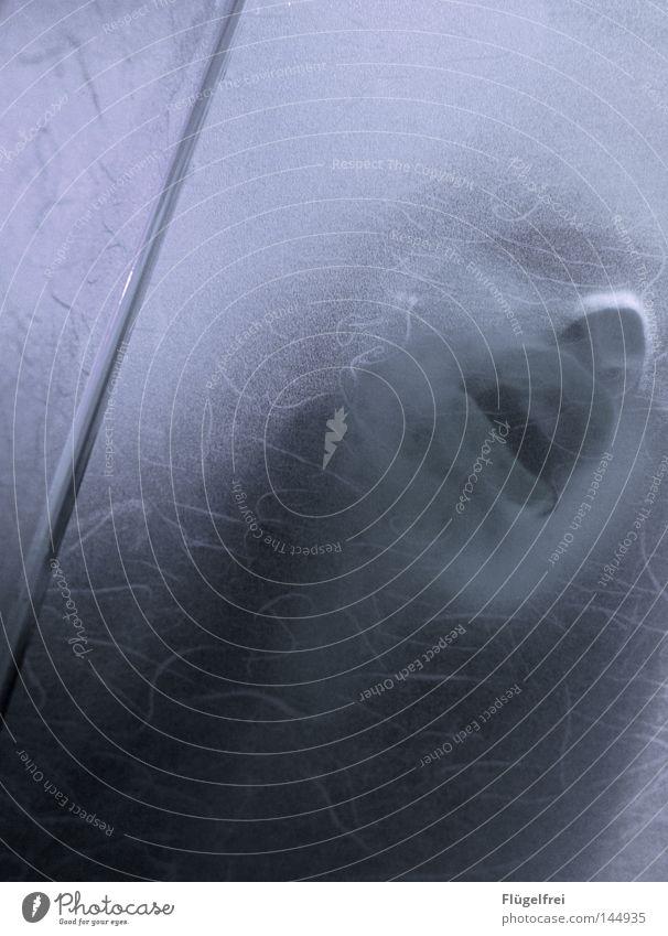Ein Hauch von Wärme Haare & Frisuren Gesicht Krankheit Mensch feminin Frau Erwachsene Jugendliche Nase Lippen Piercing Linie berühren Bewegung drehen bedrohlich