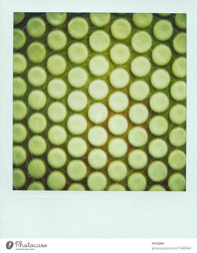 Die Quadratur der Kreise Punkt Reihe Spalte grün Wand Noppe System Wiederholung Symmetrie Muster Strukturen & Formen Geometrie graphisch Bodenbelag Mauer