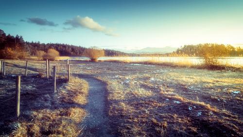 Sonnenuntergangsstimmung Himmel Natur blau Landschaft Wolken Winter kalt Wege & Pfade See braun Horizont Seeufer Zaun Bayern