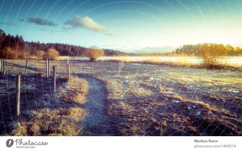 Sonnenuntergangsstimmung Winter Natur Landschaft Himmel Horizont Sonnenaufgang Seeufer kalt blau braun Bayern Wege & Pfade Osterseen Zaun Wolken Farbfoto