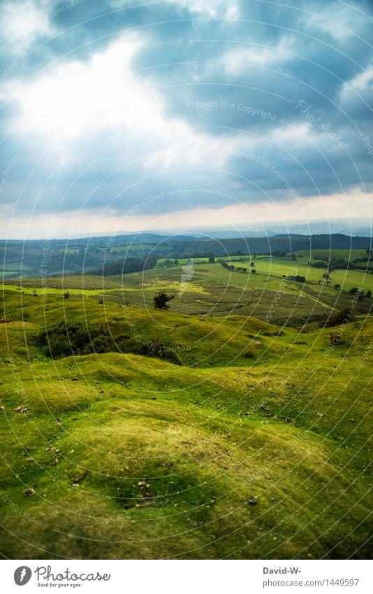 grüne Wiesen ruhig Ferien & Urlaub & Reisen Ausflug Abenteuer Ferne Sommerurlaub wandern Umwelt Natur Landschaft Himmel Wolken Gewitterwolken Herbst Wetter