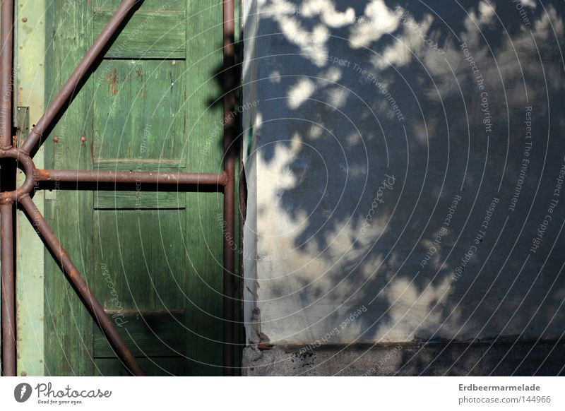 Tür vs. Schatten Baum ruhig Wand Holz Fassade verfallen Stab Gitter