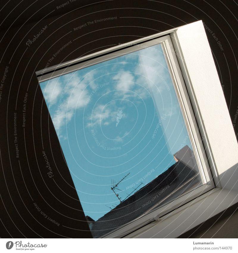 Stubenhocker Wohnung Wand Fenster Fensterscheibe Wolken Nachbar abgelegen Dach Antenne Kontrast hell Schatten dunkel Quadrat Häusliches Leben Detailaufnahme