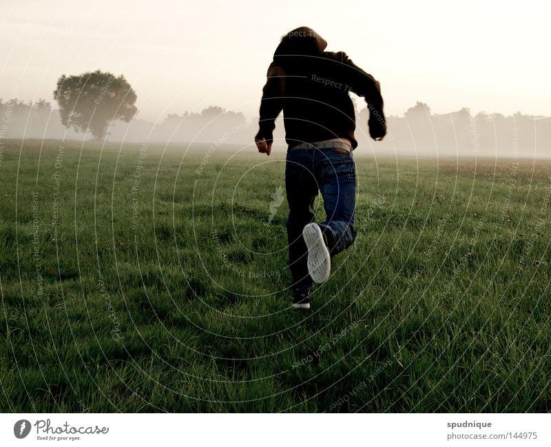 acht grad celsius Baum Sommer Freude Wolken Leben kalt Herbst Wiese springen Gras Bewegung Freiheit Nebel laufen Wassertropfen nass