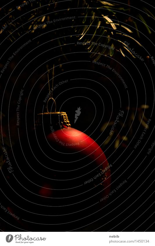 Weihnachtsbaumkugel Weihnachten & Advent schön Wärme Feste & Feiern Metall träumen glänzend Warmherzigkeit Glaube Kitsch Kugel Vorfreude Christbaumkugel