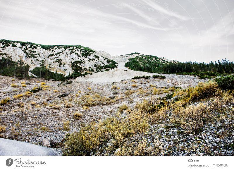 Schöne Tristesse Natur grün Blume Landschaft Einsamkeit ruhig Winter dunkel kalt Berge u. Gebirge Umwelt Herbst natürlich grau Felsen Freizeit & Hobby