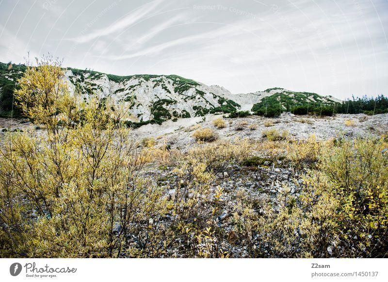 Schöne Tristesse Freizeit & Hobby wandern Umwelt Natur Landschaft Himmel Wolken Herbst schlechtes Wetter Baum Sträucher Wald Felsen Alpen Berge u. Gebirge