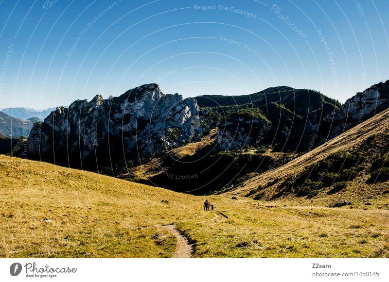 Up and down Mensch Himmel Natur Sonne Erholung Landschaft Einsamkeit ruhig Ferne Berge u. Gebirge Herbst Wiese Wege & Pfade natürlich Freiheit gehen