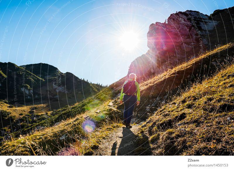 Auf, auf! Lifestyle Freizeit & Hobby wandern Junge Frau Jugendliche Natur Landschaft Himmel Herbst Schönes Wetter Wiese Alpen Berge u. Gebirge Gipfel Rucksack
