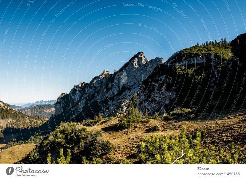Rotwand Freizeit & Hobby wandern Umwelt Natur Landschaft Himmel Herbst Schönes Wetter Sträucher Wald Felsen Alpen Berge u. Gebirge Gipfel gigantisch groß