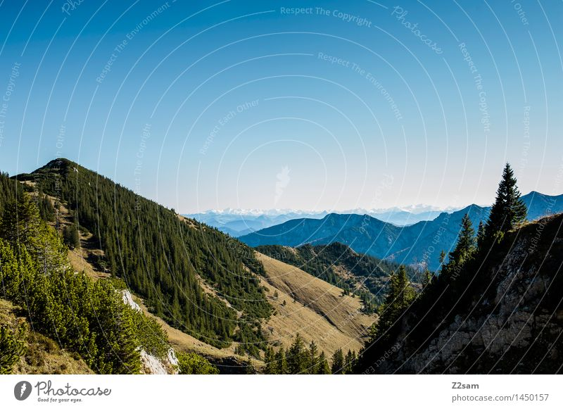 Rotwand Freizeit & Hobby wandern Natur Himmel Herbst Schönes Wetter Baum Wald Alpen Berge u. Gebirge Gipfel gigantisch nachhaltig natürlich blau Erholung Idylle