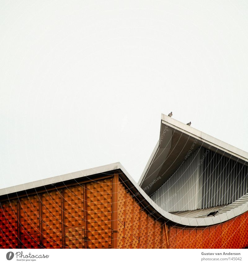 Harmonie II Haus gelb Berlin Wand Gebäude Metall Kunst Haut Design gold Fassade modern Kultur Konzert Quadrat