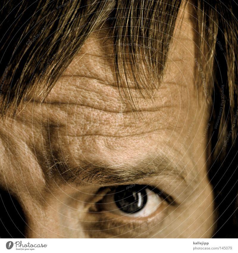 symmetrie ist die harmonie des kleinen mannes Haare & Frisuren Haarschnitt Pony Scheitel Falte Hautfalten Gesicht Detailaufnahme Blick entdecken Pore Pupille