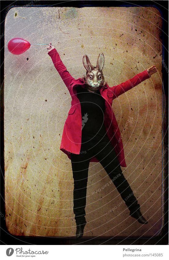 red rabbit Hase & Kaninchen springen Luftballon Mantel rot Tier Säugetier Maske verkleiden alice im wunderland Mensch fliegen Osterhase