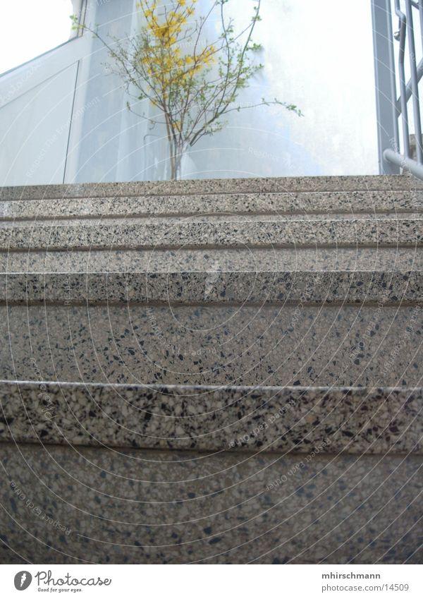Treppe@haus Haus Stein Architektur Treppe Treppenhaus Steintreppe