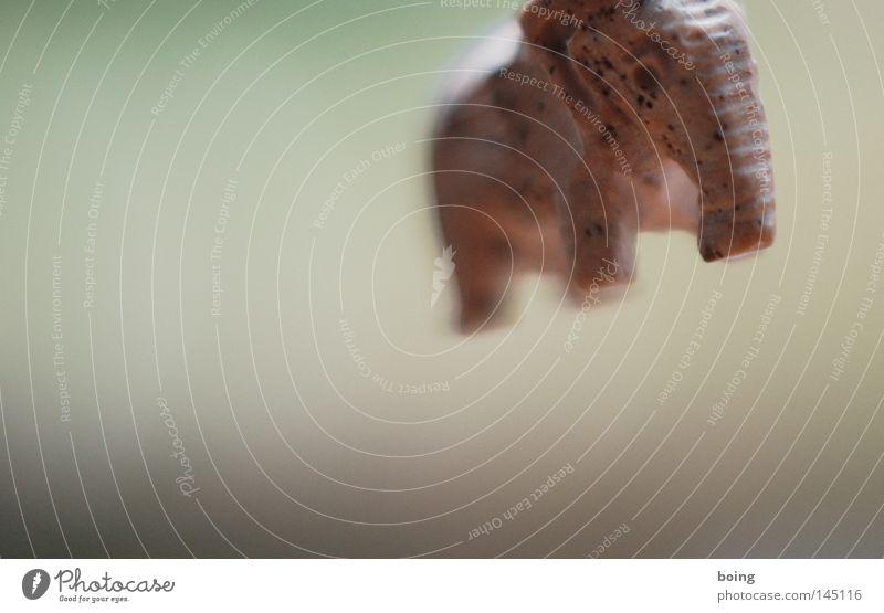 wilder Elefant Kunst Reichtum Schweben Elefant Kunsthandwerk Schmuckanhänger Gedächtnis