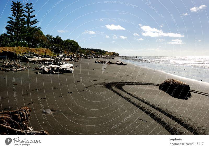 Waitara Beach Spuren Neuseeland Strand springen schwarz Baum Lava Meer Pazifik Atlantik Holz Treibholz schön Wasser New Plymouth Strandung Straße blau Himmel