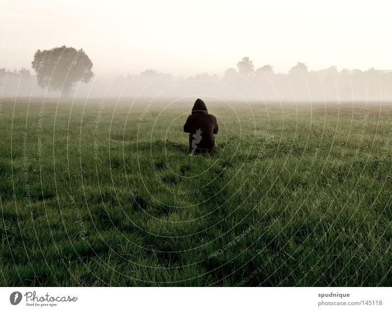 auf niemanden warten Wald Wiese Gras Halm Waldlichtung Baum Feld Ferne Morgen Morgennebel Nebel Nebelfeld kalt nass Sommer Sommermorgen hocken frieren