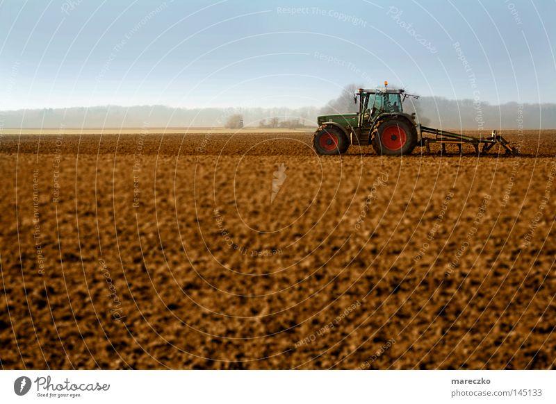 Traktor Natur blau rot Wiese Landschaft braun Arbeit & Erwerbstätigkeit Feld Gastronomie Landwirtschaft Bauernhof Schönes Wetter Landwirt Maschine Fahrzeug Wirtschaft
